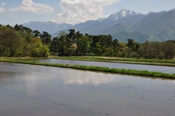 八ヶ岳中央高原からの甲斐駒鳳凰三山-1.jpg